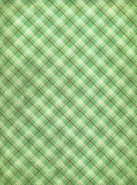 Green Plaid Checkered Photography Backdrop - 8093 - Backdrop Outlet