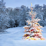 842 Outdoor Snow Christmas Tree Lights Backdrop - Backdrop Outlet