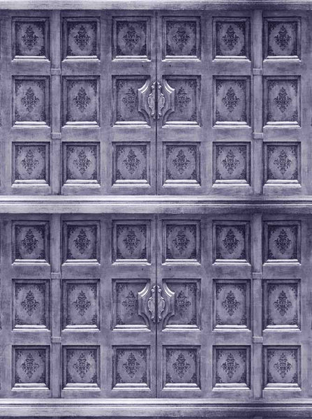 Silver Dynasty Door Backdrop - 9063 - Backdrop Outlet