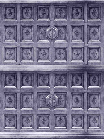 9063 Silver Dynasty Door Backdrop - Backdrop Outlet
