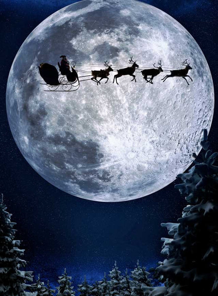 Santa Sleigh Moon Christmas Backdrop - 9264 - Backdrop Outlet