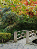 932 Autumn Bridge Backdrop - Backdrop Outlet