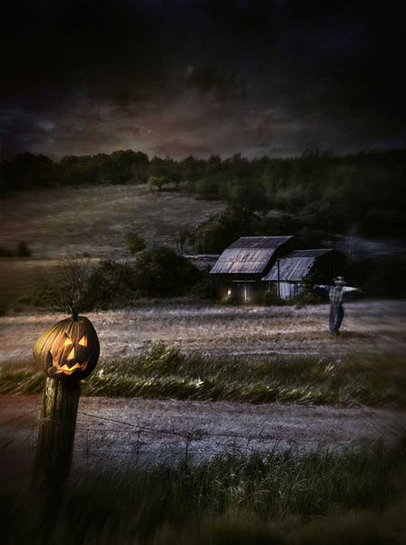 Haunted Field Halloween Scarecrow Photography Backdrop - 9410 - Backdrop Outlet