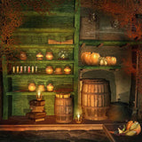 Halloween Pumpkin Closet Hand Drawn Photography Backdrop - 9412 - Backdrop Outlet