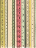 Color Rulers Backdrop - 9911 - Backdrop Outlet