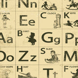 9915 Alphabet Letters Backdrop Backtoschool - Backdrop Outlet