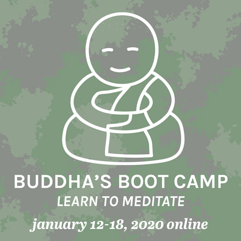 Buddha's Boot Camp - Learn To Meditate (Online) - Begins January 2020