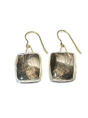 Fossilized Oak Earrings