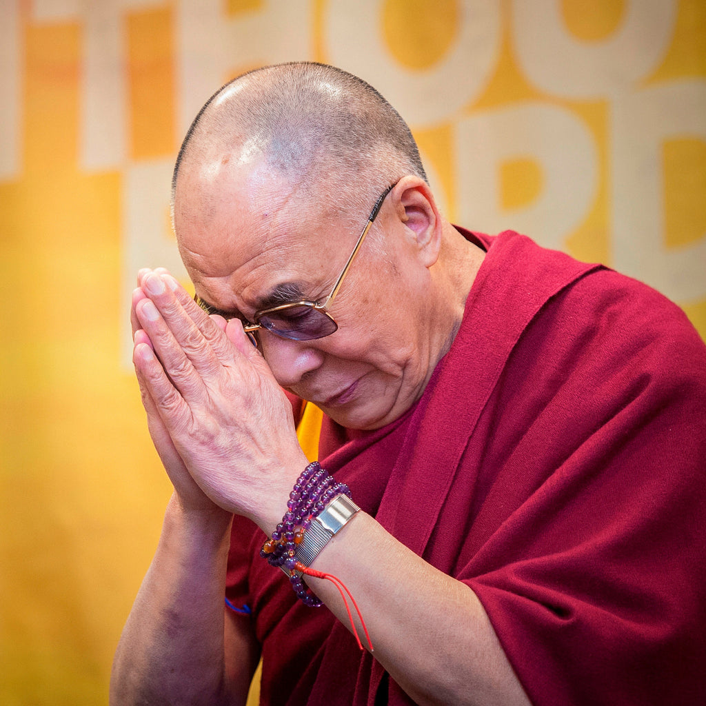The Dalai Lama Comes To Town