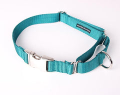 Everyday Clip Martingale Dog Collar