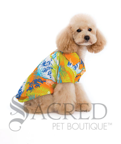 products/Dogo-design-Hawaiian-dog-costume-SY.jpg