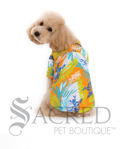 products/Dogo-design-tropical-dog-costume-SY.jpg