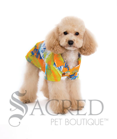 products/Dogo-design-tropical-dog-shirt-SY.jpg