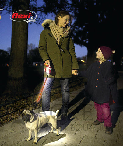 products/Flexi-Vario-Retractable-dog-leash-lifestyle-1-SY.jpeg