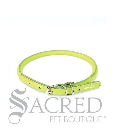 products/Glamour-round-leather-buckle-dog-collar-green-SY.jpeg
