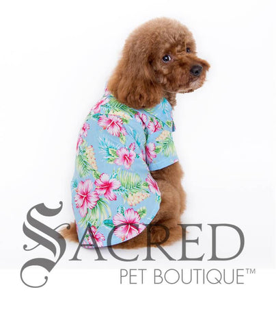 products/Hawaiian-blue-hibiscus-shirt-for-dogs-4-SY.jpg