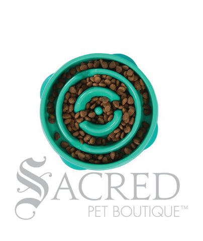 products/Outward-Hound-fun-feeder-teal-maze-mini-SY.jpg