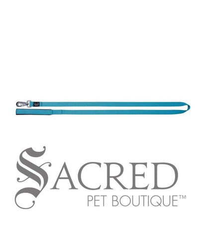 products/Padded-Handle-Leash-Turquoise-SY.jpg