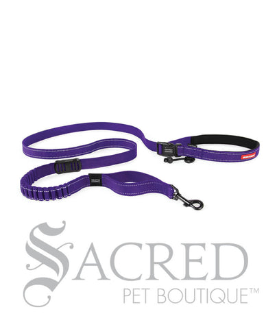 products/Road-Runner-Leash-Purple-SY.jpeg