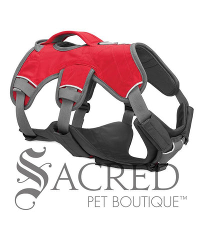 products/Ruffwear-Brush-Guard-webmaster-body-protection-for-dogs-SY.jpg