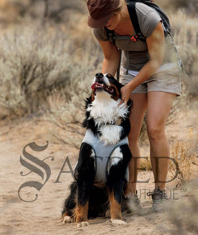 products/Ruffwear-SwampCooler4-SY.jpg