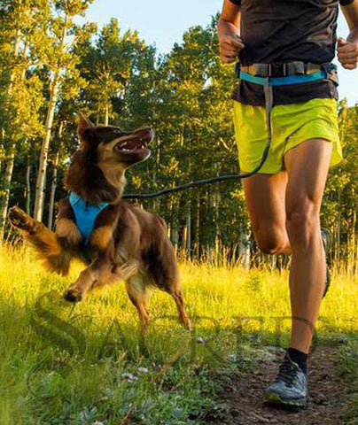 products/Ruffwear-trail-runner-SY.jpg