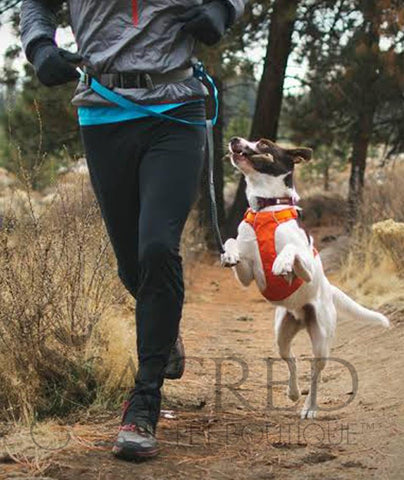 products/Ruffwear-trail-runner-running-belt-system-lifestyle-SY.jpg