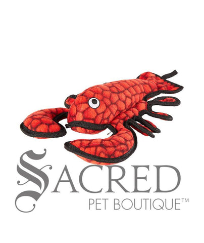 products/Tuffy-Sea-Creatures-Larry-Lobster-Jr-Floating-dog-toy-SY.jpg