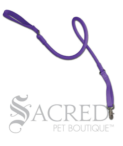 products/Wacky-Walkr-grape-purple-shock-absorbing-dog-leash-SY.jpeg