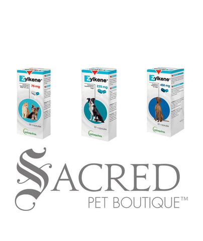 products/Zylkene-supplement-for-cats-and-dogs-group-SY.jpg
