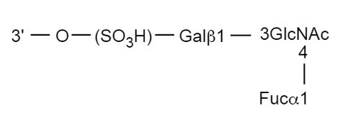 Glyko® 3'-Sulfated Lewis a [GKAD-00147]