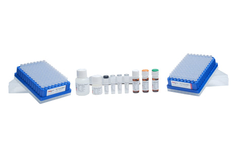 GlykoPrep® Rapid N-Glycan Preparation with APTS (96-ct) [GP96NG-APTS]