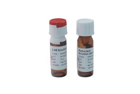 GlykoPrep® Rapid-Reductive-Amination™ 2-AB Labeling Module (24-ct) [GS24-AB]