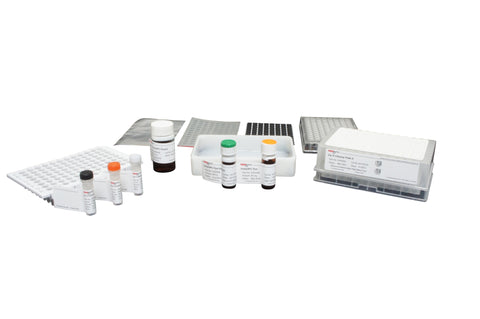 Gly-X™ N-Glycan Rapid Release and Labeling with InstantPC™ Kit (24-ct) [GX24-IPC]