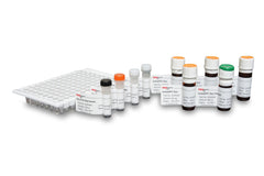 Gly-X™ Deglycosylation and InstantPC™ Labeling (96-ct) [GX96-201PC]