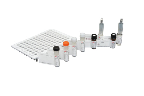 Gly-X™ Deglycosylation and InstantAB™ Labeling Module (96-ct) [GX96-202IAB]