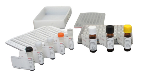 Gly-X™ with 2-AB Express™ Deglycosylation and Labeling Module Set (24-ct) [GX24-401AB]