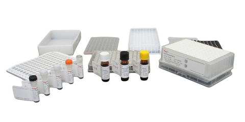 Gly-X™ N-Glycan Rapid Release and Labeling with 2-AB Express™ Kit (96-ct) [GX96-2AB]