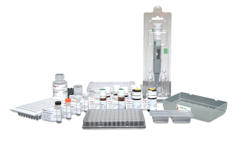 Gly-X™ N-Glycan Rapid Release and Labeling with InstantQ™ Kit (96-ct) [GX96-IQ]