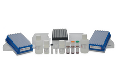 GlykoPrep®-plus Rapid N-Glycan Sample Preparation with APTS [GPPNG-APTS]