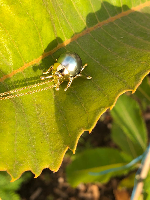 Beetle bug insect Tahitian pearl, 14k yellow gold pendant necklace