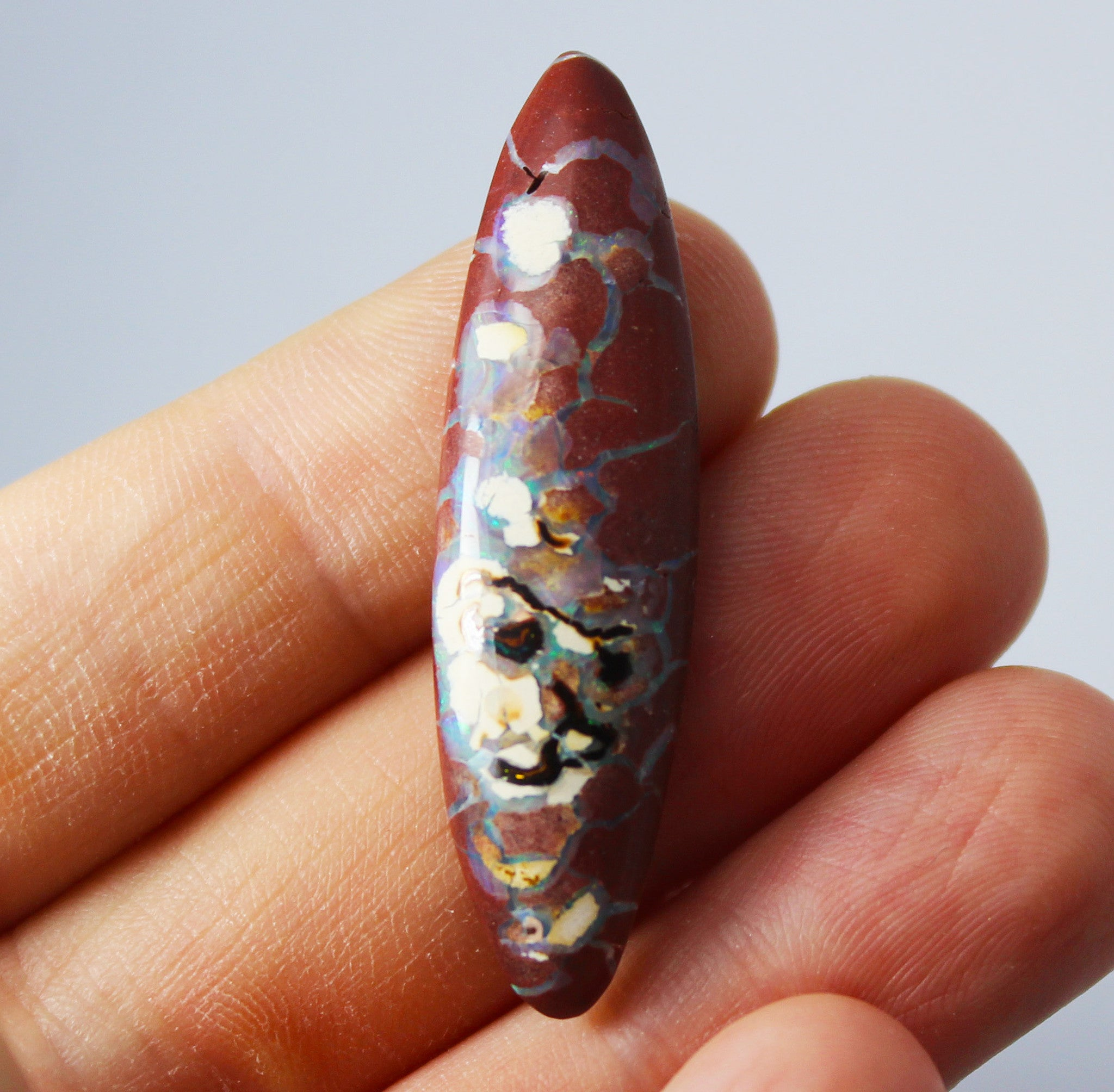 Australian boulder opal from Lightning Ridge polished cabochon CLICK HERE - Sarah Hughes - 9