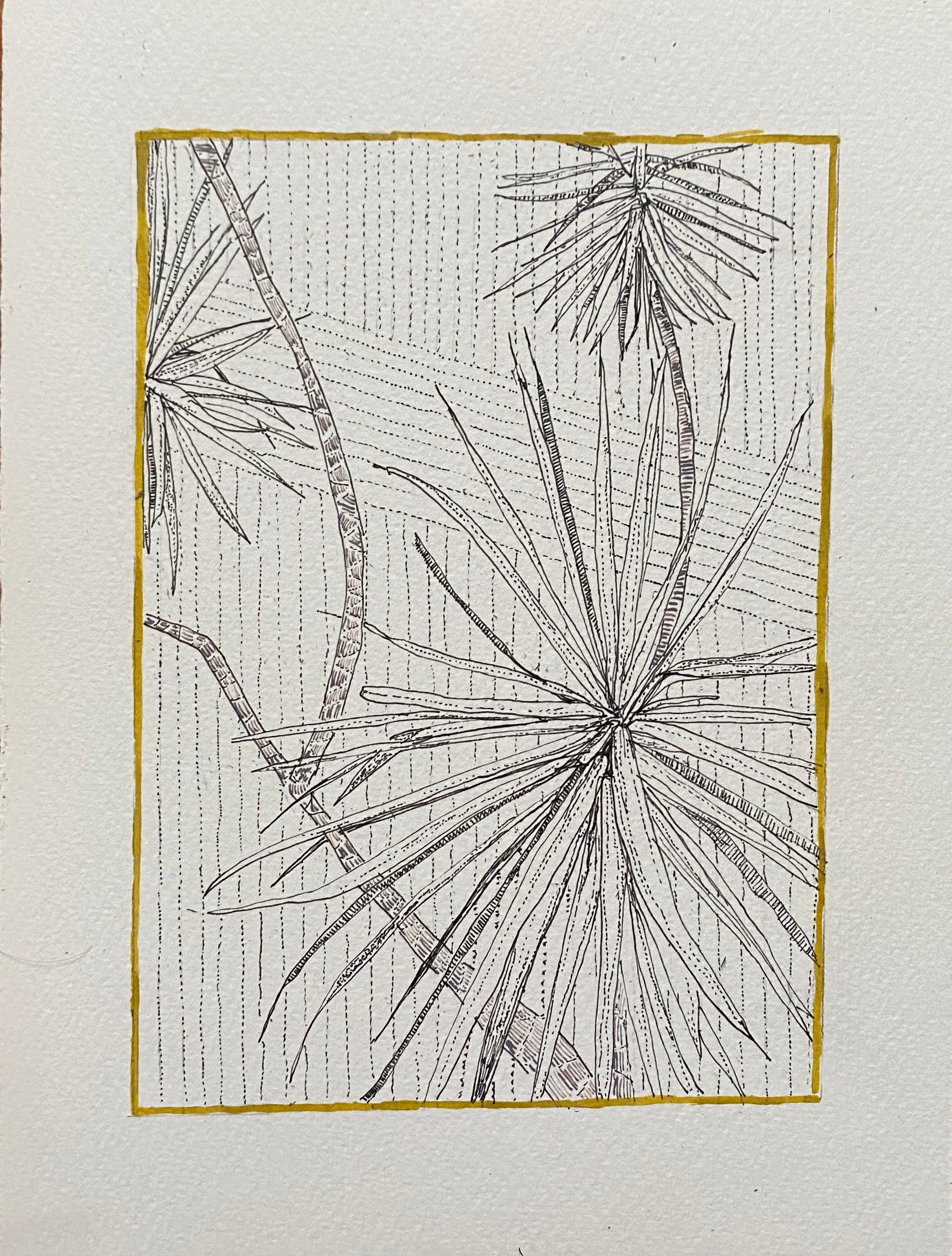 Clare Halifax: Portrait Palm Study 4
