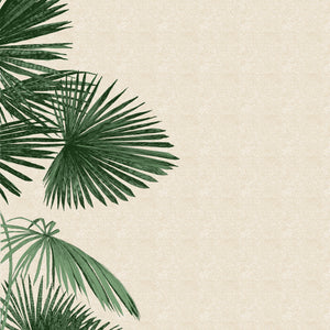 Clare Halifax: A Side of Palm