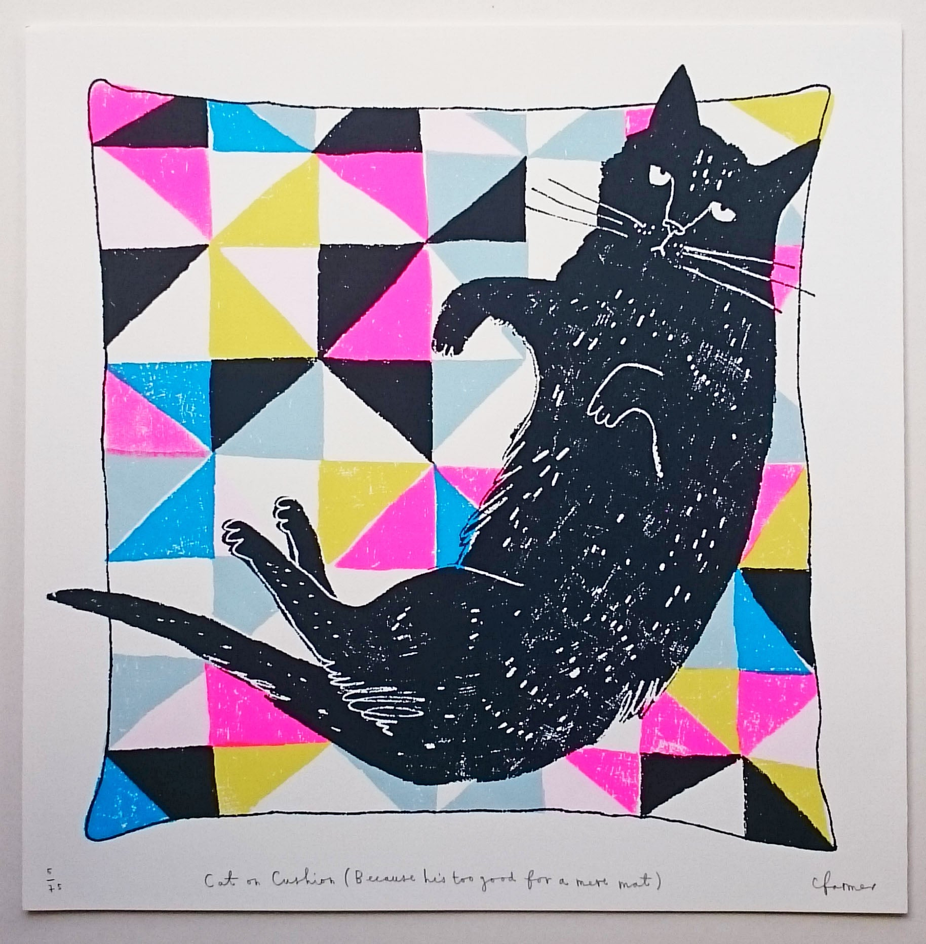 Charlotte Farmer: Cat on a Cushion