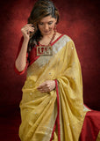 Pure Linen beige saree with zari border & mirror work all over