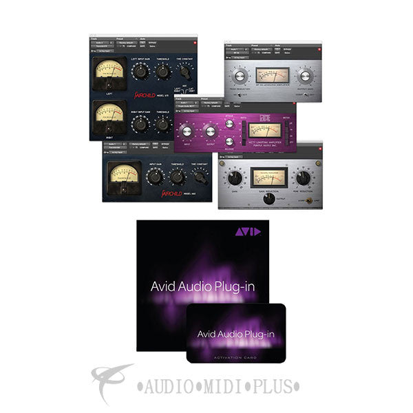 Avid Audio Plug-in Activation Card Tier 2 - 99006543800 - 724643116033