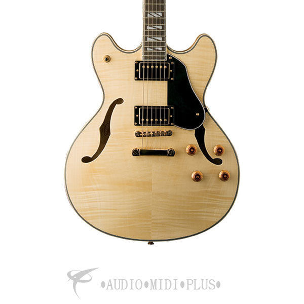 Washburn HB Electric Guitar-Natural - HB35NK-U - 801128005188