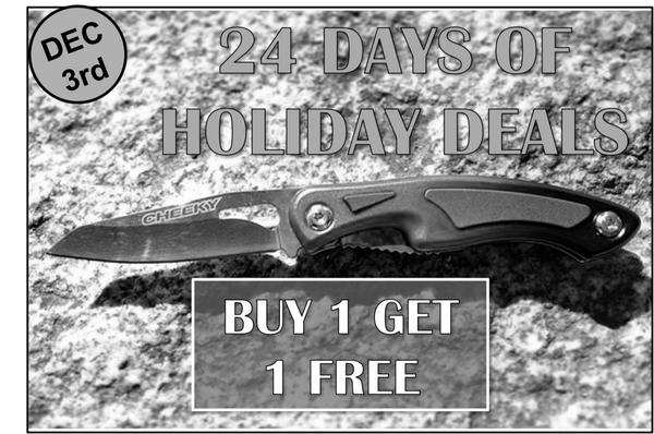 Day 3: 24 Days of Holiday Deals