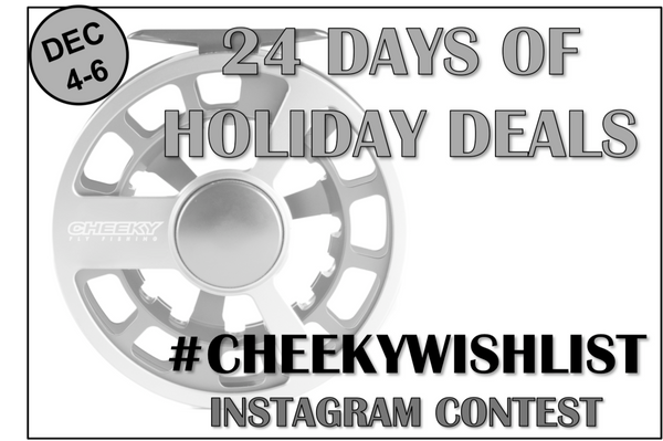 DAY 4-6: #CHEEKYWISHLIST